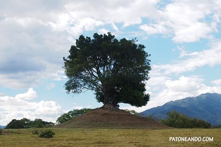 El árbol del amor - Chaparral Tolima - Patoneando blog de viajes