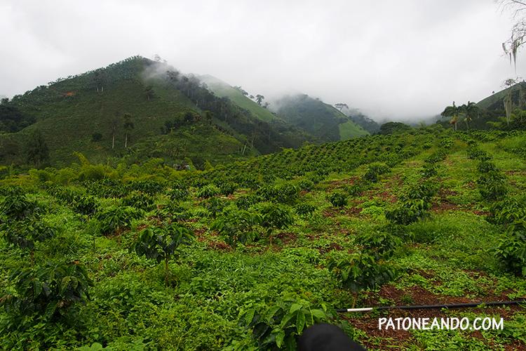 eje-cafetero-Santa-rosa-de-cabal-Patoneando-blog-de-viajes-8.jpg