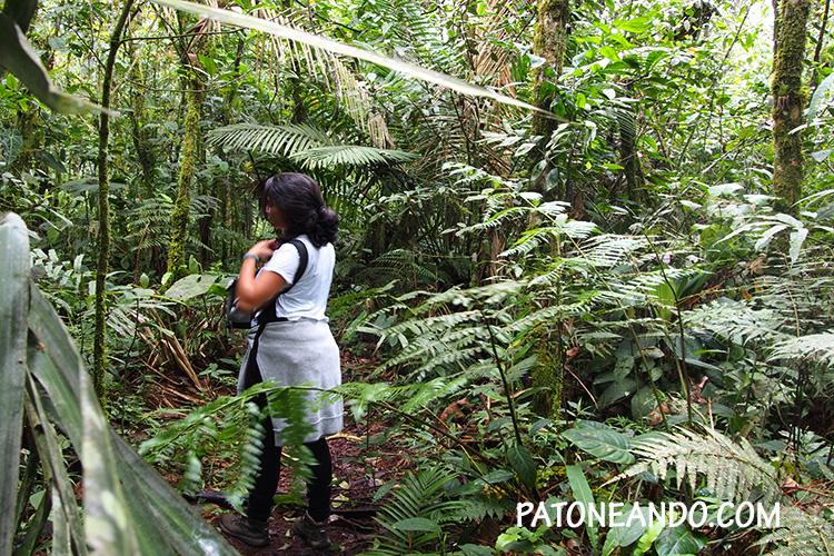 eje-cafetero -Patoneando-blog-de-viajes- Lina Maestre.jpg
