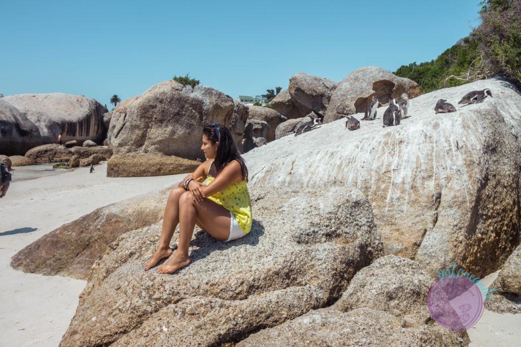Que ver en ciudad del cabo - guia - Boulders beach ciudad del cabo - Patoneando blog de viajes (5)
