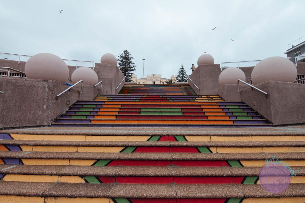 Que ver en ciudad del cabo - guia - Patoneando blog de viajes (12)