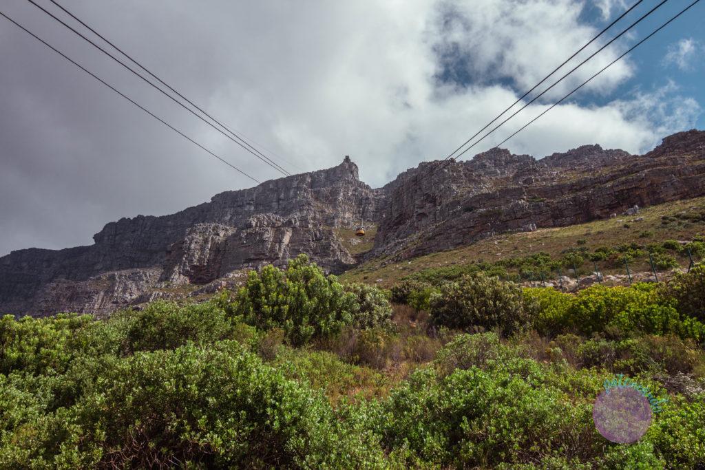 Que ver en ciudad del cabo - guia - Table Mountain -Patoneando blog de viajes (16)