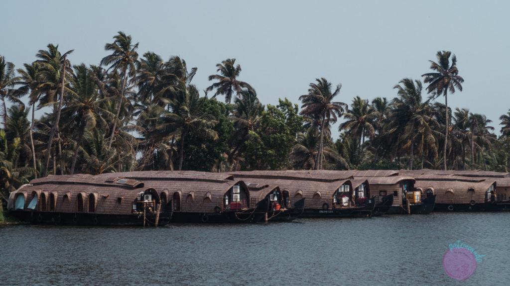 que hacer en kerala india - lo mejor de kerala - Patoneando blog de viajes